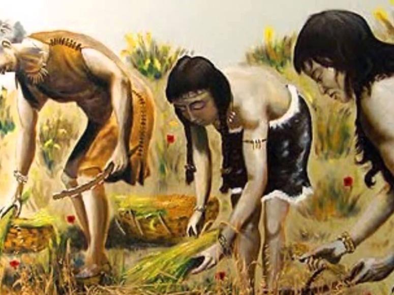 famille-arawak.jpg