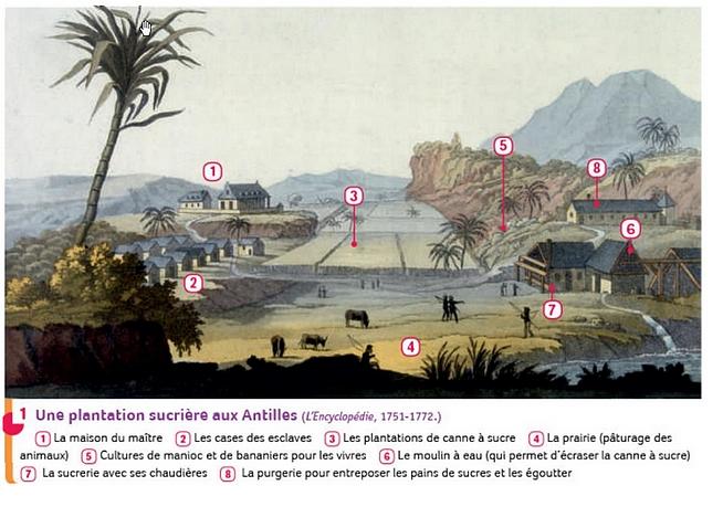 plantation-sucrières-antilles